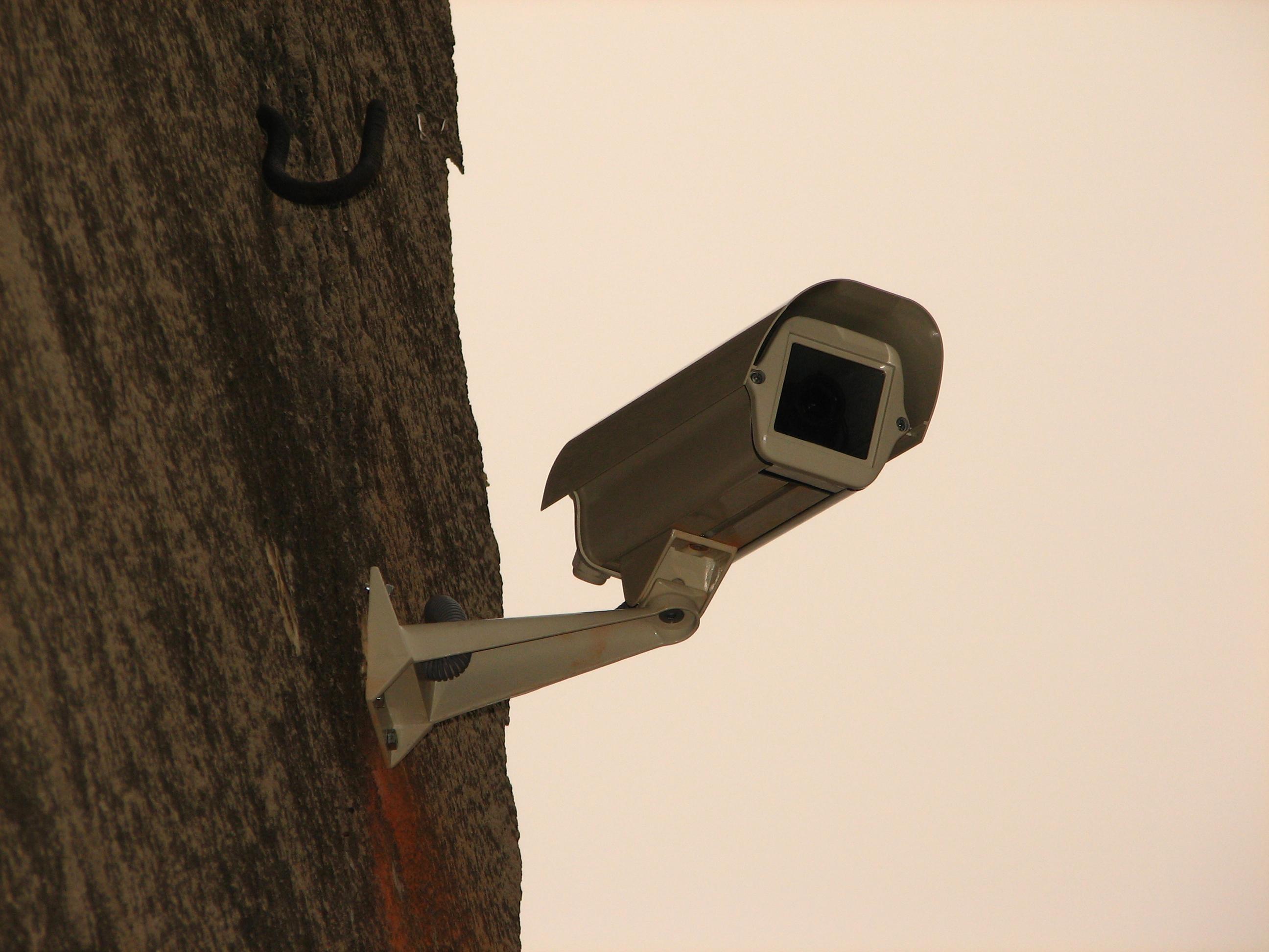 Cuando instalar una cámara falsa puede traernos problemas verdaderos